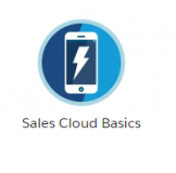 Sales-Cloud-Basics