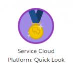 Service-Cloud-Platform-Quick-Look